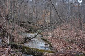 Creek by Pomona Natural Bridge