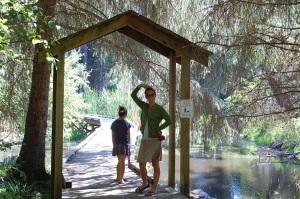 Wetland hike