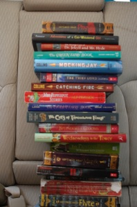 These are 20 of the books Henna has read so far on the trip!