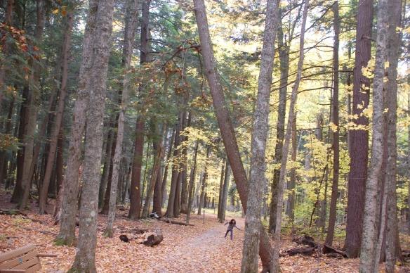 Nature Girl among the pines