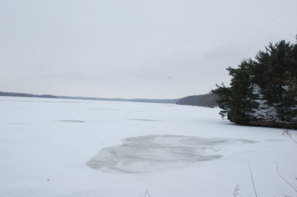 Frozen Illinois River