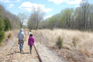 Hiking along abandon tracks near Green Earth Nature Preserve in Carbondale, Il.