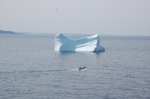 Berg at Twillingate